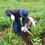 ふじしまの森 岩手県葛巻町植樹祭